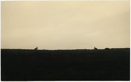 Yamamoto Masao, # 1374, 1987-2018