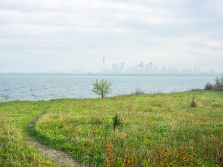 Robert Burley, View of Toronto Skyline from Lighthouse Point, Tommy Thompson Park, 2019