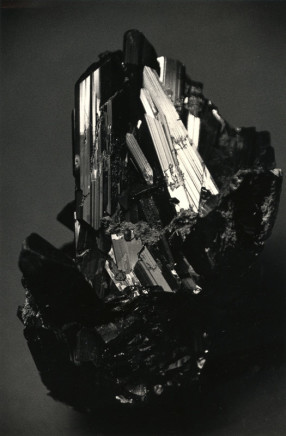 Yamamoto Masao, # 1572, 1987-2018