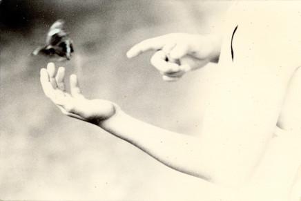 Yamamoto Masao, # 1212, 1987-2018