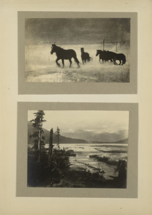 Minna Keene, Horses and Lake, circa 1914