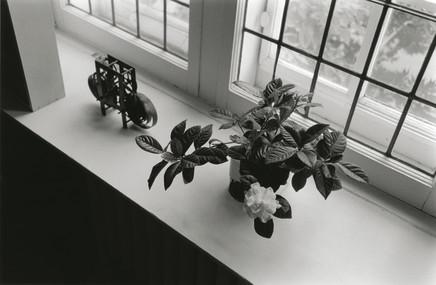 Charles Gagnon, Michiko's Gardenia, Montreal, 1974, 1974