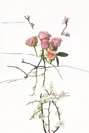 Paul Butler, Untitled (Flowers Arrangement) 01, 2019