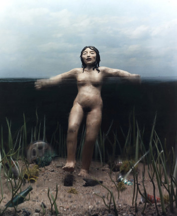 Sarah Anne Johnson, Lady of the Lake, 2002