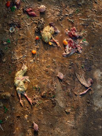 Guillaume Simoneau, Untitled (remains), Takeo city, Saga prefecture, Japan, 2016