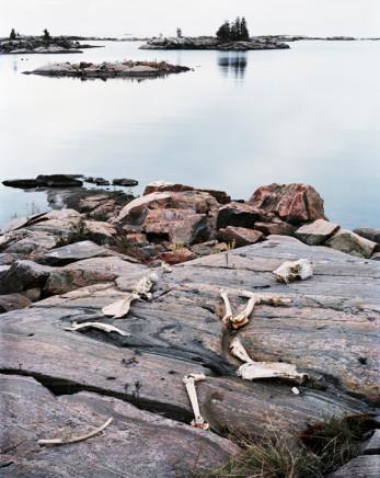 Joseph Hartman, Moose Bones #11, Norgate Inlet, ON, 2008