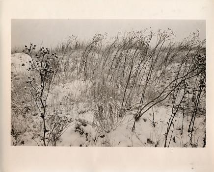 Douglas Clark, Canmore [field in snow], circa 1980