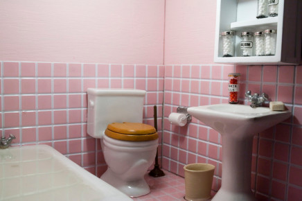 Sarah Anne Johnson, Bathroom, 2009