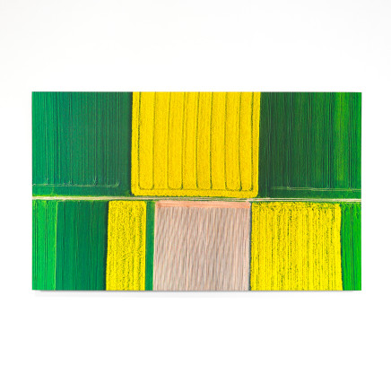 Elizabeth Thomson, Out on the Plain - colour field I, 2020