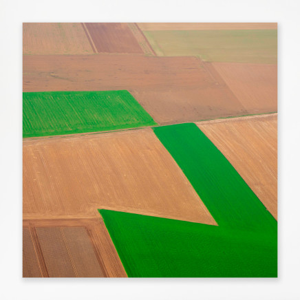 Elizabeth Thomson, Out on the plain - Encounter with cubism and green shape, 2020