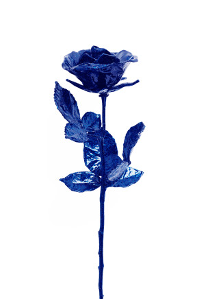 Reuben Paterson, Wallflower (cobalt), 2019