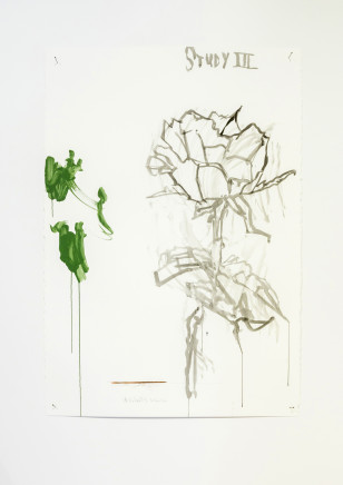 Martin Poppelwell, Rose - Te Rohi, 2016