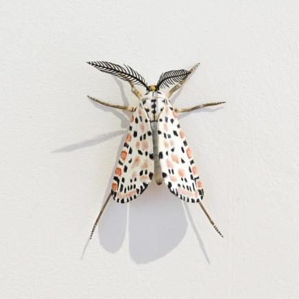 Elizabeth Thomson, Moth #24, 2020