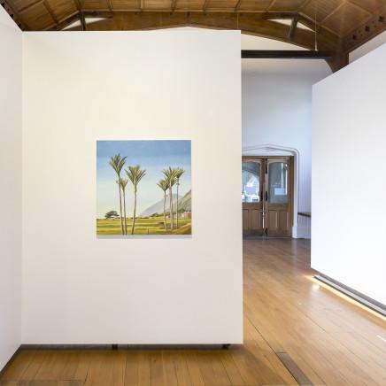 Stanley Palmer, Towards Kohaihai - Karamea , 2019