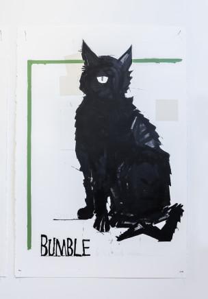 Martin Poppelwell, Bumble, my Cat - Kei Runga te Whenua, 2016