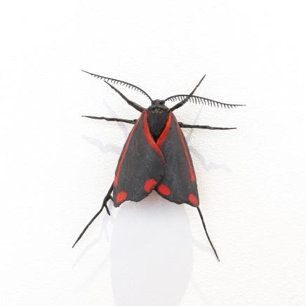 Elizabeth Thomson, Moth #39, 2020