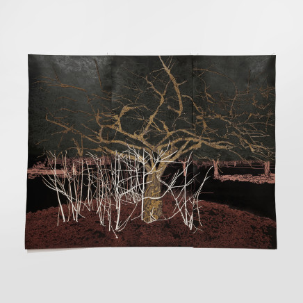 Fiona Van Oyen, The anthropomorphic garden (red), 2017/18