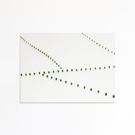 Elizabeth Thomson, Thousand Acre Studies I, 2012