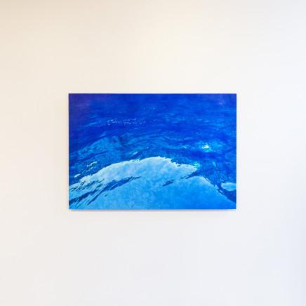 Elizabeth Thomson, New Blueland , 2014