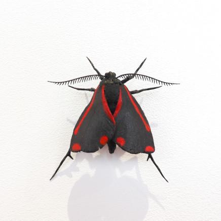 Elizabeth Thomson, Moth #38, 2020