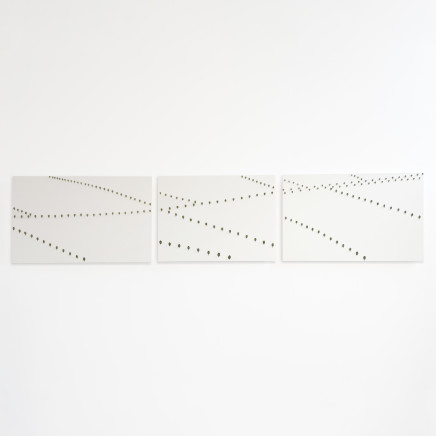 Elizabeth Thomson, Thousand Acre Studies II, III, IV Triptych, 2004
