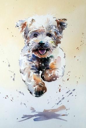 "Jake Winkle CUDDLY COCKERPOO Watercolour 18"" X 13"""