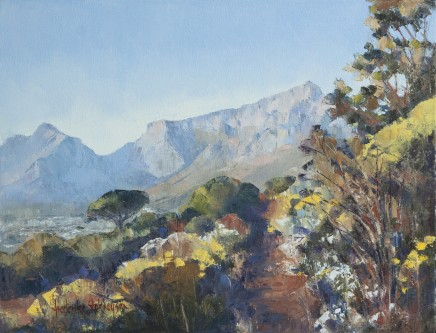"Frederike Stokhuyzen  EARLY MORNING TABLE MOUNTAIN AND SPRING FLOWERS  Oil on canvas  16"" X 21.5"""
