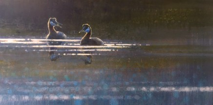 "Ewoud de Groot  RED-NECKED GREBES  Oil on linen  28"" x 55"""