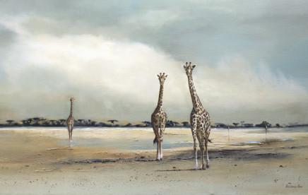 "Karen Laurence-Rowe LAKE BED GIRAFFES Oil on Canvas 25"" X 40"""