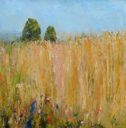 "David Walsh BARLEY, HIGH SUMMER Oil on canvas 20"" x 20"""