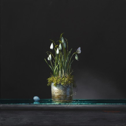 "Bryan Hanlon SNOWDROPS, BLUE AND SONG THRUSH Acrylic on board 20"" x 20"""