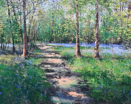 """Colin Carruthers WOODLAND SHADOWS Oil on Canvas 40"""" X 40"""""""