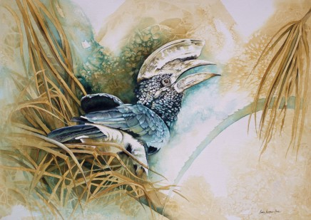 """Karen Laurence-Rowe SILVERY CHEEKED HORNBILL Mixed Media on Canvas 21"""" X 30"""""""