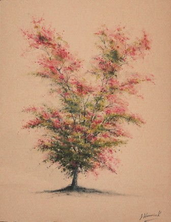 "Jeremy Hammick HAWTHORN TREE Watercolour 14"" x 11"""