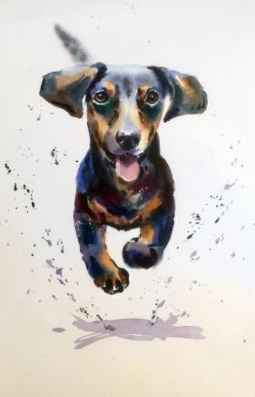 "Jake Winkle DASHING DACHSHUND Watercolour 18"" X 13"""