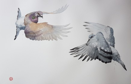 "Karl Martens  PIGEONS I (FRAMED)  Watercolour  40"" x 60"""
