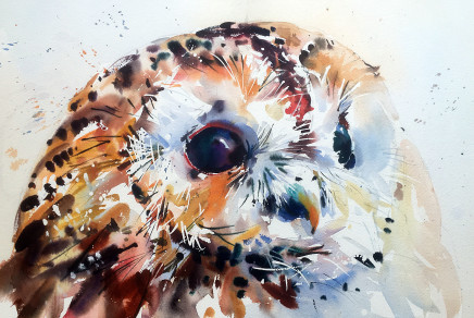 """Jake Winkle TAWNY TEXTURES Watercolour 13"""" x 18"""""""