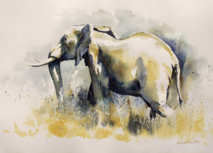 "Karen Laurence-Rowe ELEPHANT - BIG FIVE SERIES Watercolour 23"" X 31"""