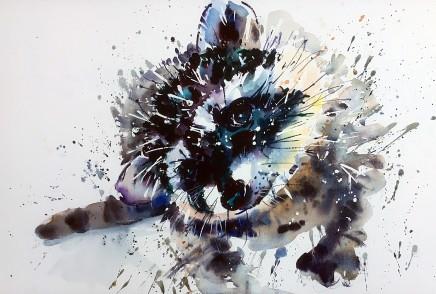 """Jake Winkle ROCKY RACOON Watercolour 13"""" x 18"""""""