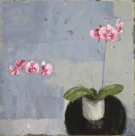 """Ann Armitage PINK ORCHID Oil on linen 24"""" x 24"""""""