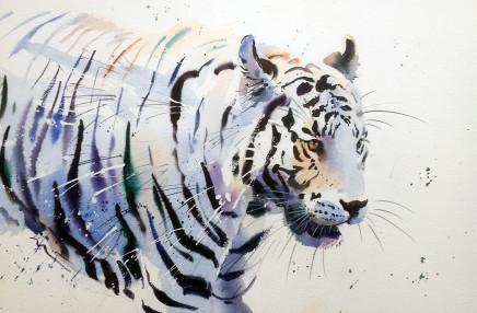 """Jake Winkle WHITE TIGER Watercolour 13"""" x 18"""""""