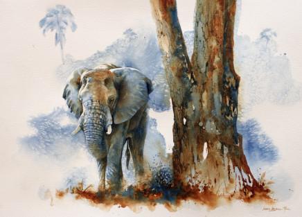 "Karen Laurence-Rowe ZAMBEZI BULL Watercolour 20"" X 27"""
