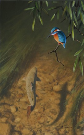 "Rodger Mcphail  KINGFISHER AND TROUT  Oil on paper  14"" x 9"""