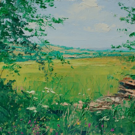 Colin Carruthers - FIELD EDGE FLOWERS