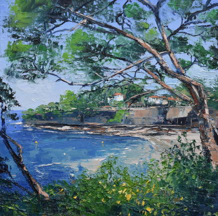 Colin Carruthers - PINE TREES, PALOMA BEACH