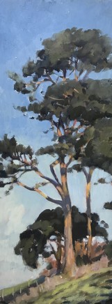 "Alice Boggis-Rolfe STUDY OF SCOTS PINE Oil on Panel 16"" x 6"""