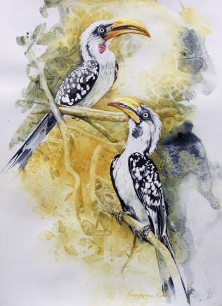 """Karen Laurence-Rowe YELLOW BILLED HORNBILLS Watercolour 16"""" X 12"""""""