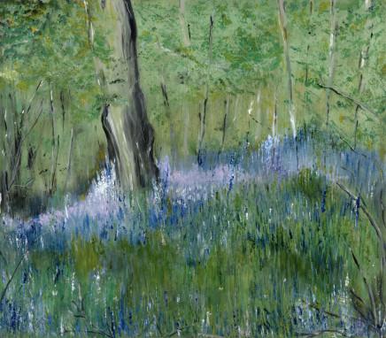 Maureen Gillespie, Bluebells, Pinsley Woods, 2018