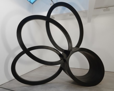 Nigel Hall RA, Mirrored, 2011