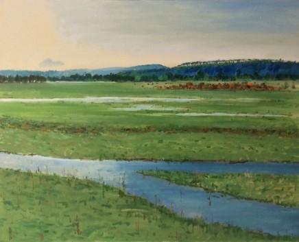 Philip Vainker, Port Meadow, Early Morning, 2020